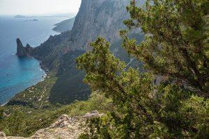 Sardegna-Baunei-costa-orientale-sarda-Ogliastra